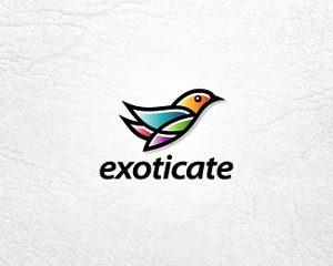 Logos Coloridos Exoticate