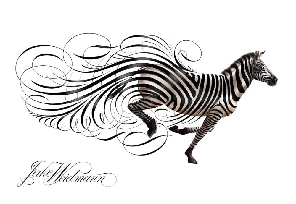 lapis-e-papel-zebra