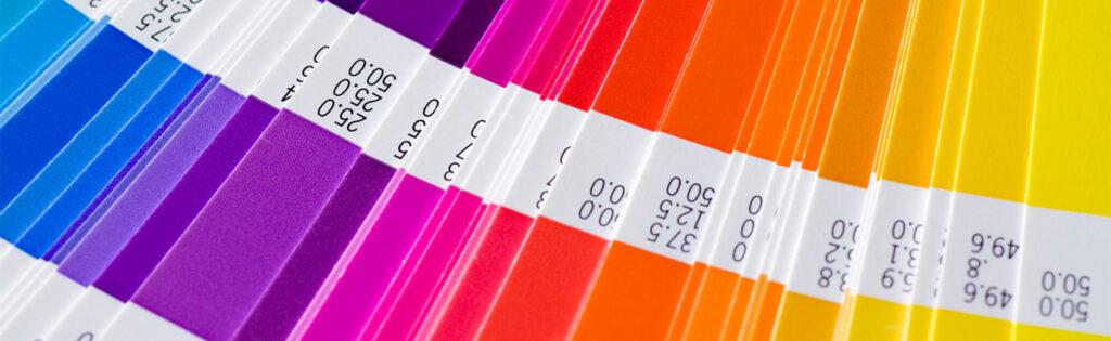 identidade-visual-paleta-cores