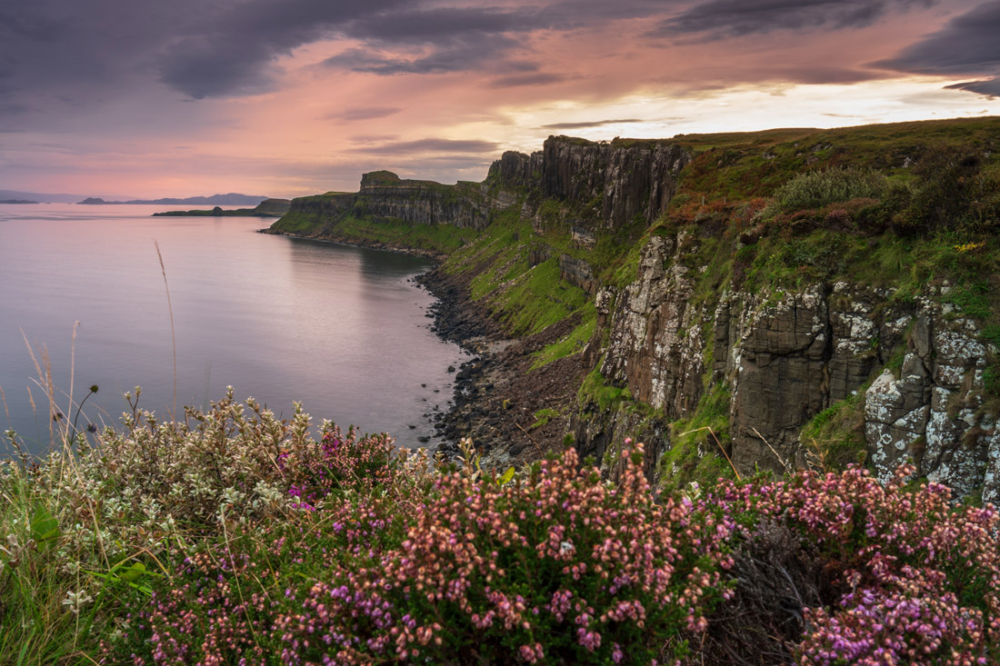 tripe-para-fotografia-de-paisagem-escocia-flores-sem-foco